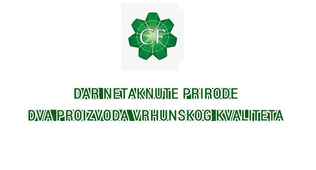 logo-za-slajd